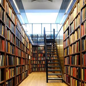 Библиотеки Трубчевска